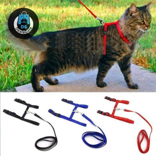 Adjustable Cat Walking Harness Pet supplies cb5feb1b7314637725a2e7: 2pcs 2pcs 2pcs 2pcs 2pcs Black Blue new style camo new style red Red Yellow
