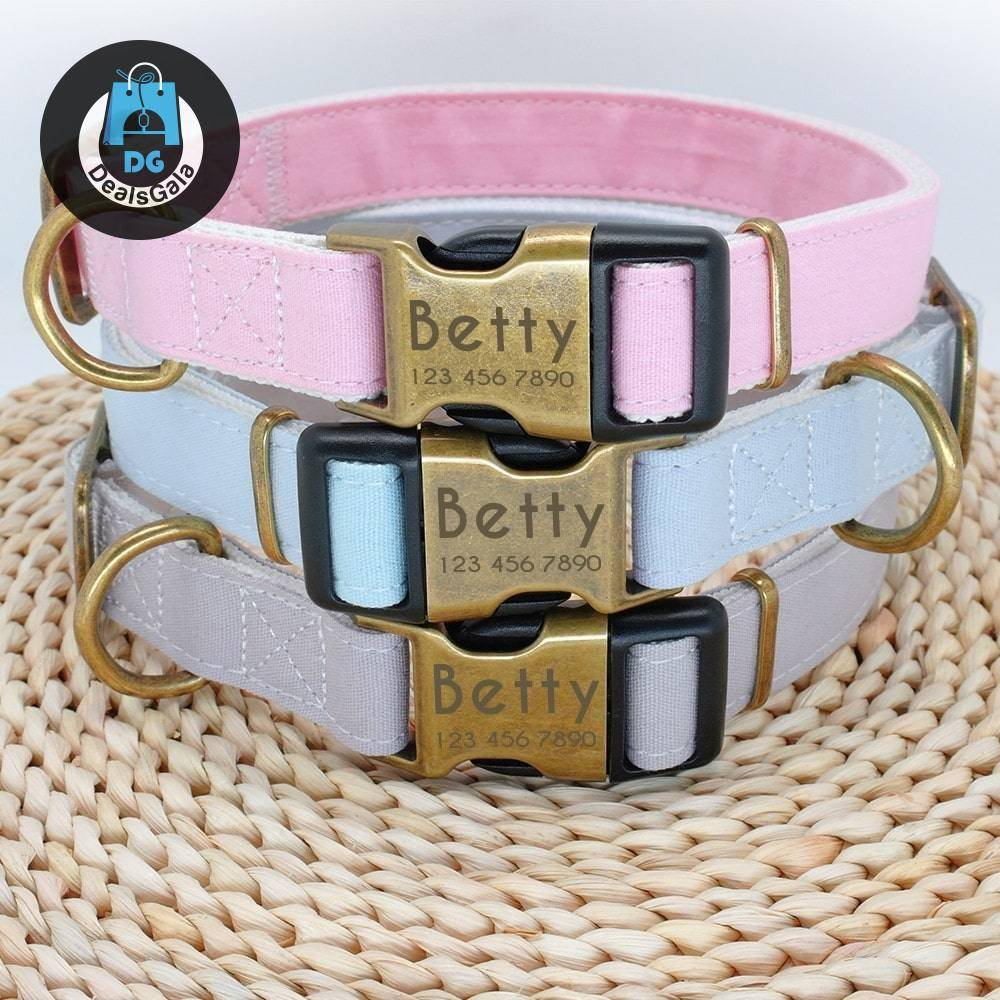 Dog's Pastel Color Collar